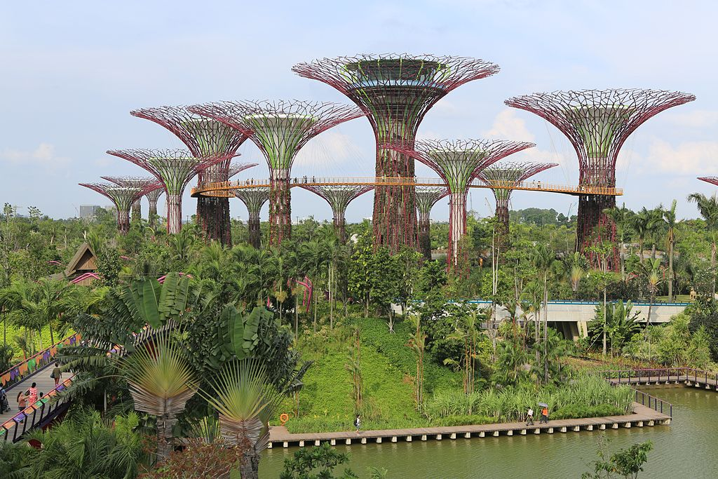 Supertree Grove Gardens by the Bay, Singapore